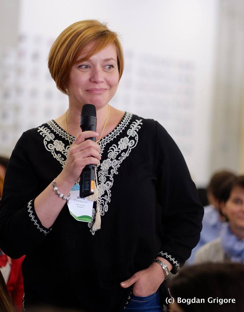 Anca Petrescu, Profile